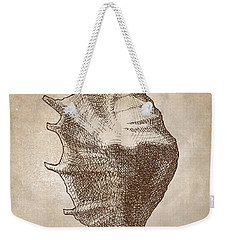 Weekender Tote Bag featuring the drawing Distressed Antique Nautical Seashell 1  by Karen Whitworth