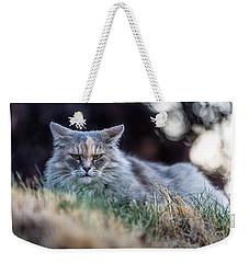 Disturbed Cat - Grace Weekender Tote Bag by Everet Regal