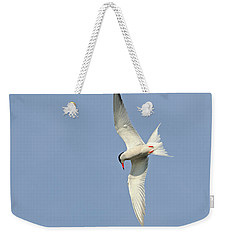 Weekender Tote Bag featuring the photograph Dive by Tony Beck