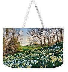 Weekender Tote Bag featuring the photograph Divine Bovines by Bill Wakeley