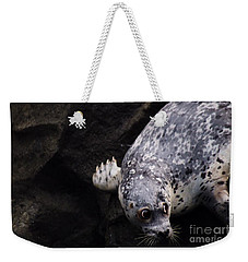 Weekender Tote Bag featuring the photograph Diving In Head First by Nick Gustafson