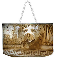 Do-00313 Lion Water Feature Weekender Tote Bag