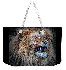 Weekender Tote Bag featuring the photograph Do Not Disturb by Brian Tarr