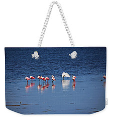 Weekender Tote Bag featuring the photograph Do What You Wanna Do by Michiale Schneider