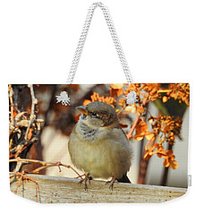 Do You Hear That Weekender Tote Bag