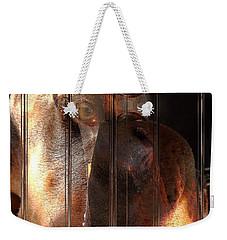 Doberman Pincher Weekender Tote Bag