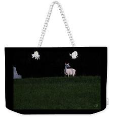 Doe, A Deer Weekender Tote Bag