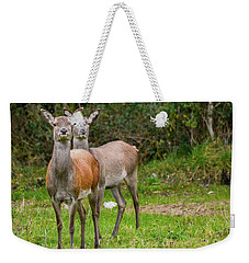 Doe Eyed Weekender Tote Bag
