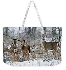 Does And Fawns Weekender Tote Bag by Brook Burling