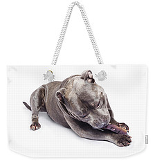 Weekender Tote Bag featuring the photograph Dog Eating Chew Toy by Jorgo Photography - Wall Art Gallery