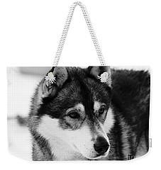 Dog - Monochrome 3 Weekender Tote Bag