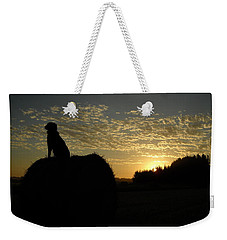 Dog On Hay Greeting Sunrise Weekender Tote Bag by Kent Lorentzen
