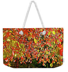 Weekender Tote Bag featuring the photograph Dogwood Confetti Riot by Michele Myers