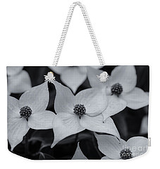 Weekender Tote Bag featuring the photograph Dogwood In Monochrome by Rachel Cohen