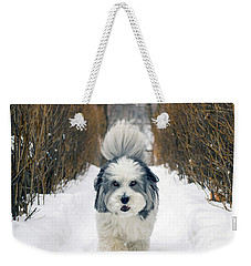 Doing The Dog Walk Weekender Tote Bag by Keith Armstrong