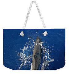 Dolphin Weekender Tote Bag by J R Seymour