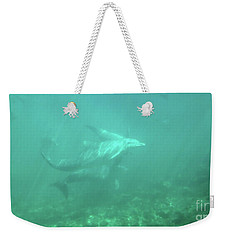 Weekender Tote Bag featuring the photograph Dolphin Swim by Francesca Mackenney