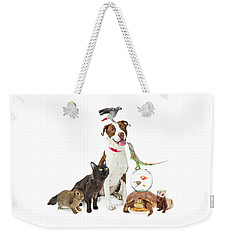 Domestic Pets Group Together With Copy Space Weekender Tote Bag