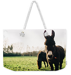Donkey And Pony Weekender Tote Bag