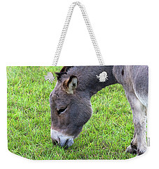 Weekender Tote Bag featuring the photograph Donkey Closeup Portrait by Jit Lim