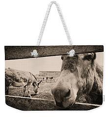 Donkey Face Weekender Tote Bag