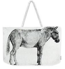Donkey Weekender Tote Bag by George Stubbs