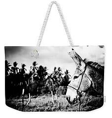 Donkey Weekender Tote Bag