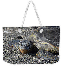 Weekender Tote Bag featuring the photograph Don't Wake Me Up by Pamela Walton