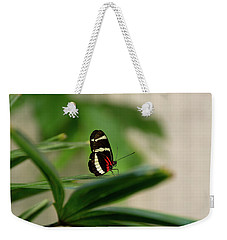Doris Longwing Butterfly Weekender Tote Bag