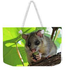 Dormouse Weekender Tote Bag