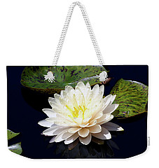 Dotty White Lotus And Lily Pads 0030 Dlw_h_2 Weekender Tote Bag