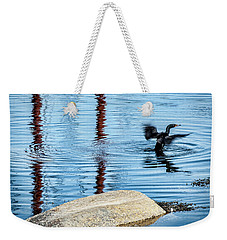 Weekender Tote Bag featuring the photograph Double-crested Cormorant by Daniel Hebard