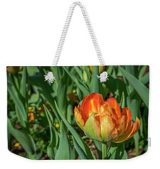 Double Multicolor Tulips Weekender Tote Bag