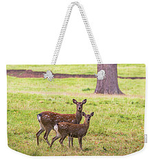 Weekender Tote Bag featuring the photograph Double Take by Scott Carruthers