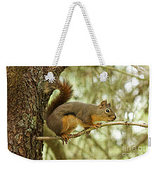 Douglas Squirrel Weekender Tote Bag by Sean Griffin