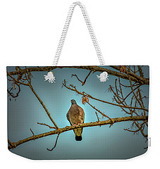 Dove #g2 Weekender Tote Bag by Leif Sohlman