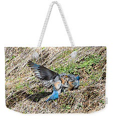 Weekender Tote Bag featuring the photograph Down For The Count by Mike Dawson