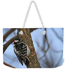 Weekender Tote Bag featuring the photograph Downy Woodpecker by Living Color Photography Lorraine Lynch