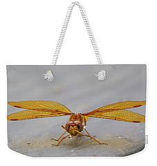 Dragon Fly Hanging Around Weekender Tote Bag