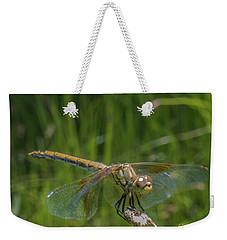 Dragonfly 7 Weekender Tote Bag