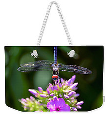 Dragonfly And Phlox Weekender Tote Bag by Kathy Eickenberg