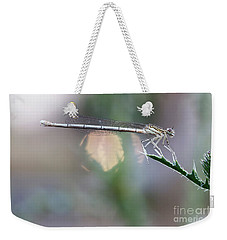 Weekender Tote Bag featuring the photograph Dragonfly On Leaf by Michal Boubin