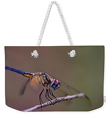 Dragonfly On Twig Weekender Tote Bag