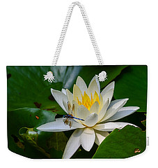 Dragonfly On Waterlily  Weekender Tote Bag by Allen Sheffield