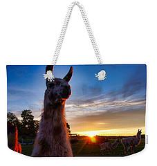 Drama Llamas Weekender Tote Bag