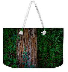 Dream World 17 Weekender Tote Bag
