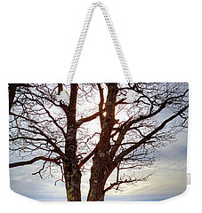 Dreamcatcher Weekender Tote Bag by Dale R Carlson