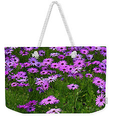 Dreaming Of Purple Daisies  Weekender Tote Bag