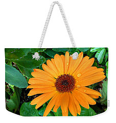 Droplets On A Daisy Weekender Tote Bag
