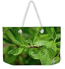 Droplets On Spring Leaves Weekender Tote Bag